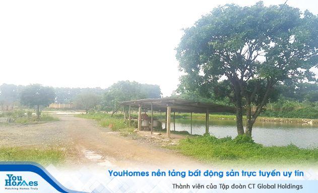 """Hà Nội: Không thiếu các dự án """"ma"""""""