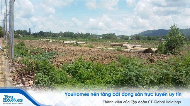Vũng Tàu: Dự án nhà ở Tuấn Hùng có nguy cơ bị thu hồi do chủ đầu tư