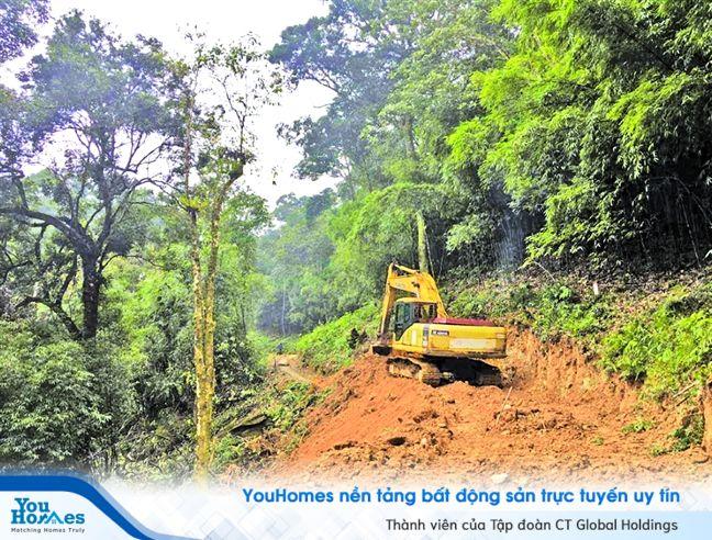 Dự án Tam Đảo: Công tác đánh giá tác động môi trường cần được thực hiện chặt chẽ