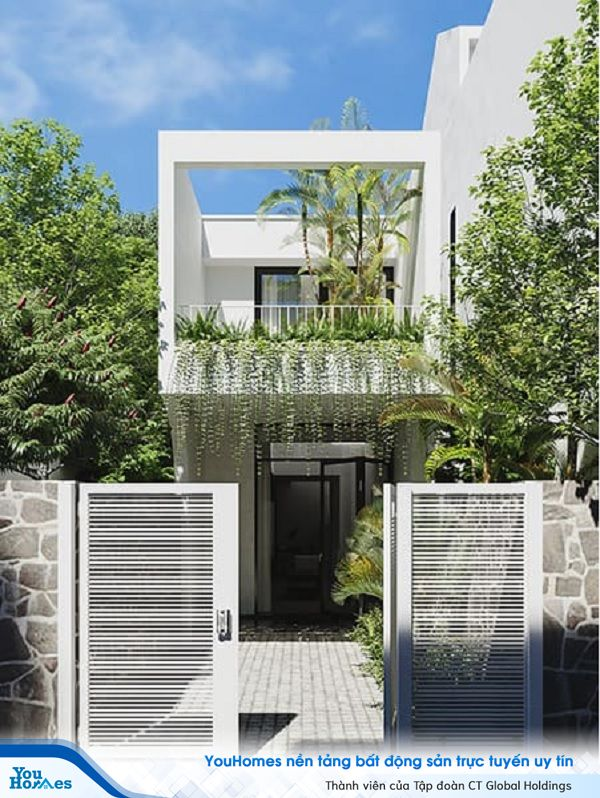 Đưa không gian thiên nhiên xanh mát vào mẫu nhà 2 tầng mặt tiền 6m.