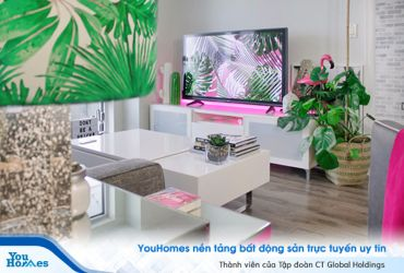 Trang trí và tạo điểm nhấn cho nhà bạn với cây xanh