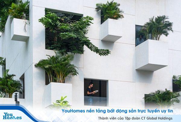 Ấn tượng khu rừng thu nhỏ giữa lòng Sài Gòn