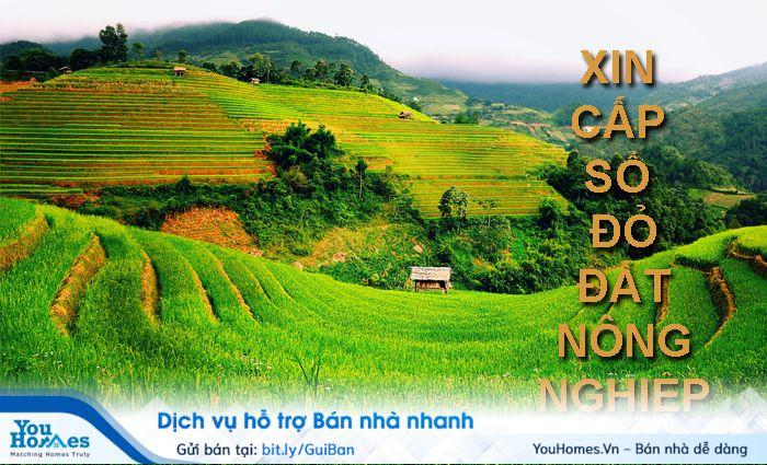 Thủ tục quyền chuyển nhượng sử dụng đất nông nghiệp của người sử dụng đất.